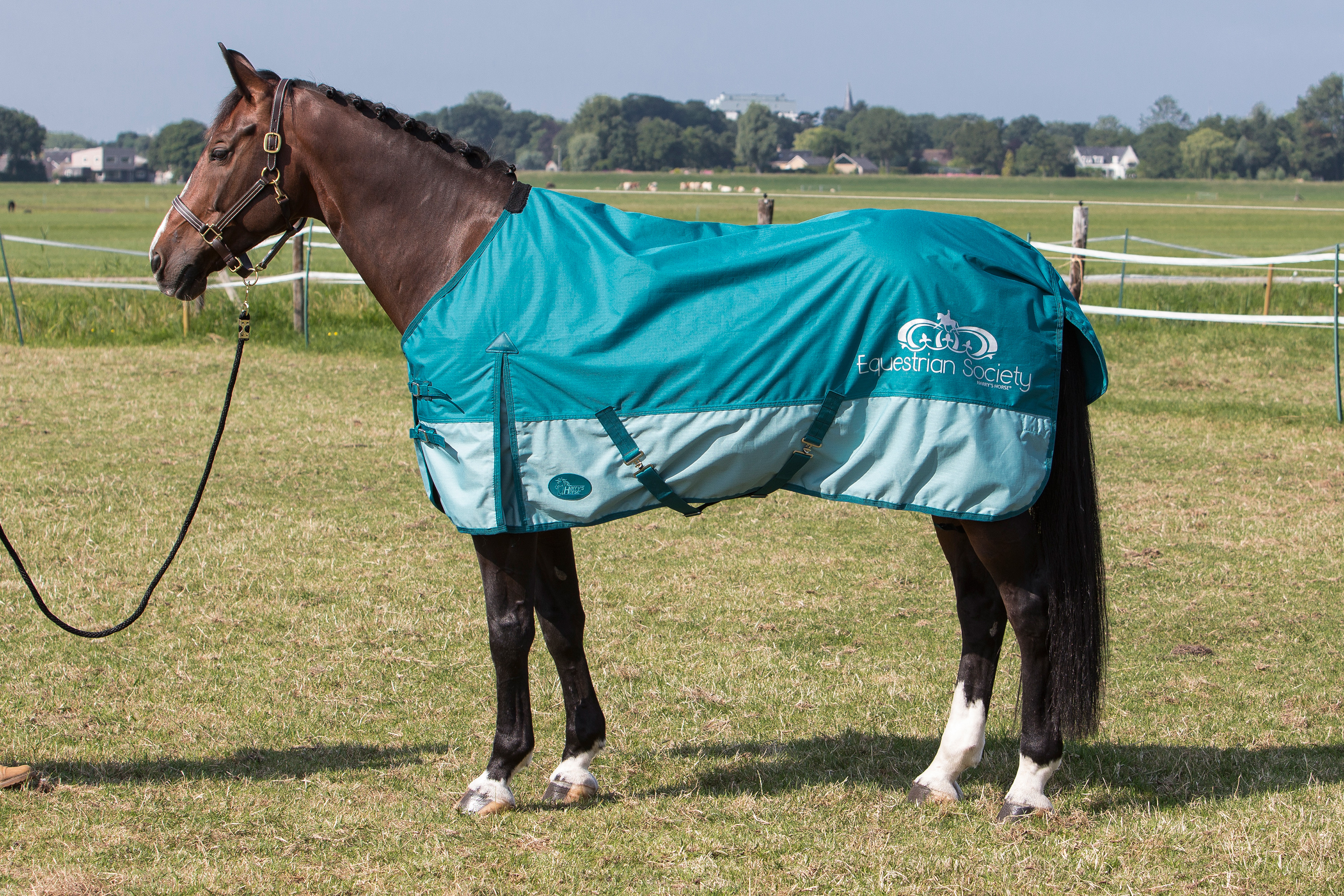 Harry's Horse Rug Thor 0 gr., TC lining Deep lake with Print