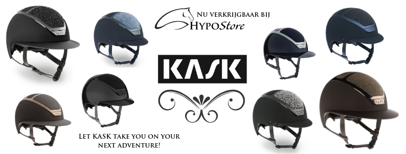 Kask Pure Shine Chrome