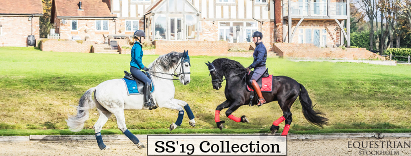 Equestrian Stockholm SS'19