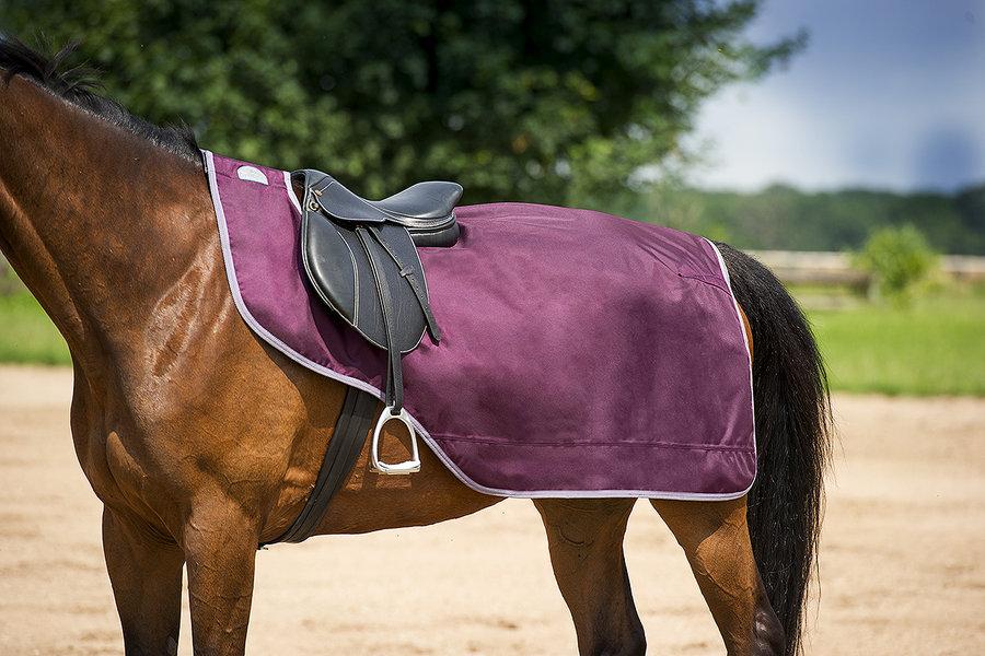 Paard > Tyrex Regen- en Winterdekens
