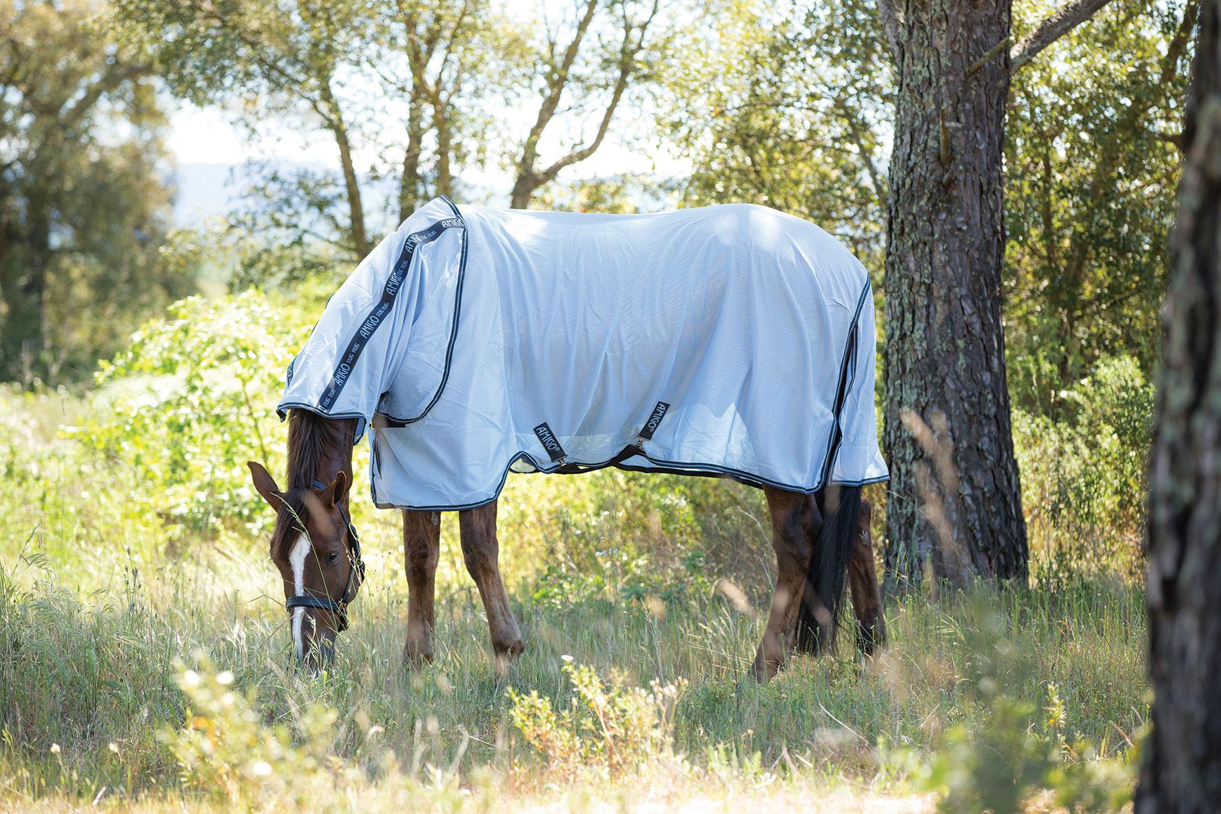Paard > Horseware > Amigo dekens