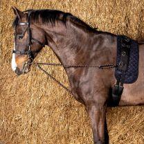 Harry's Horse Longeerkoord V-line (per paar)
