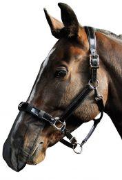 Harry's Horse Neus net zwart