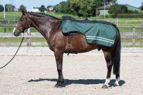 Harry's Horse FW'20 Uitrijdeken 0gr Fleece
