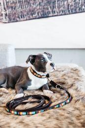 Kentucky Hondenriem Handgemaakte Parels