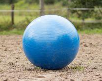 QHP Paardenvoetbal Blauw 80 cm