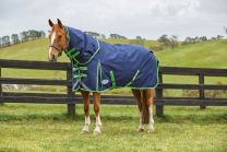 Weatherbeeta ComFiTec Plus Dynamic Detach-a-Neck Medium 220g Navy/Lime
