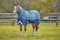 Weatherbeeta ComFiTec Plus Dynamic Combo Medium 220g Navy/ Lime plaid
