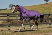 Weatherbeeta ComFiTec Plus Dynamic Detach-a-Neck Lite 0g Purple/Black