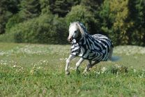 Bucas Buzz-Off Zebra Full Neck Pony