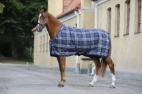 Bucas Celtic Stable Light Tartan