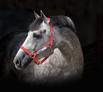 Horseware Field Safe Halster