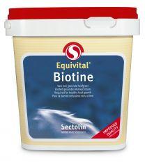Sectolin Equivital Biotine