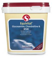 Sectolin Equivital Glucosamine, Chondroïtine en MSM