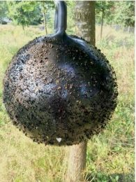 Horse Fly Trap Bal 45cm