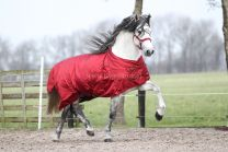 MASTER Winterdeken metallic red 150g