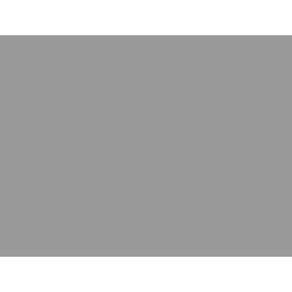 Harry's Horse Dressuurstang met lage tongboog 12mm
