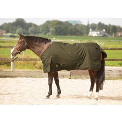 Harry's Horse FW'21 Outdoordeken Thor 100g Groen