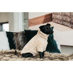 Kentucky Honden Sweater Teddy Fleece