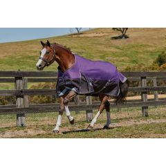 Weatherbeeta ComFiTec Plus Dynamic Standard Medium/Lite 100g Purple/Black
