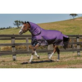 Weatherbeeta ComFiTec Plus Dynamic Detach-a-Neck Medium/Lite 100g Purple/Black