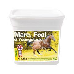 NAF Merries, Veulen en opgroeiende paarden