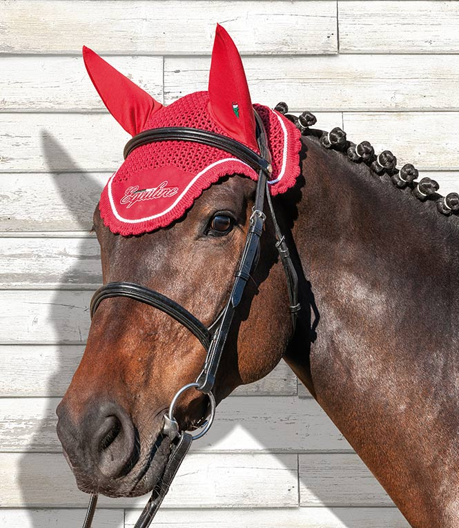 Paard > Oornetjes