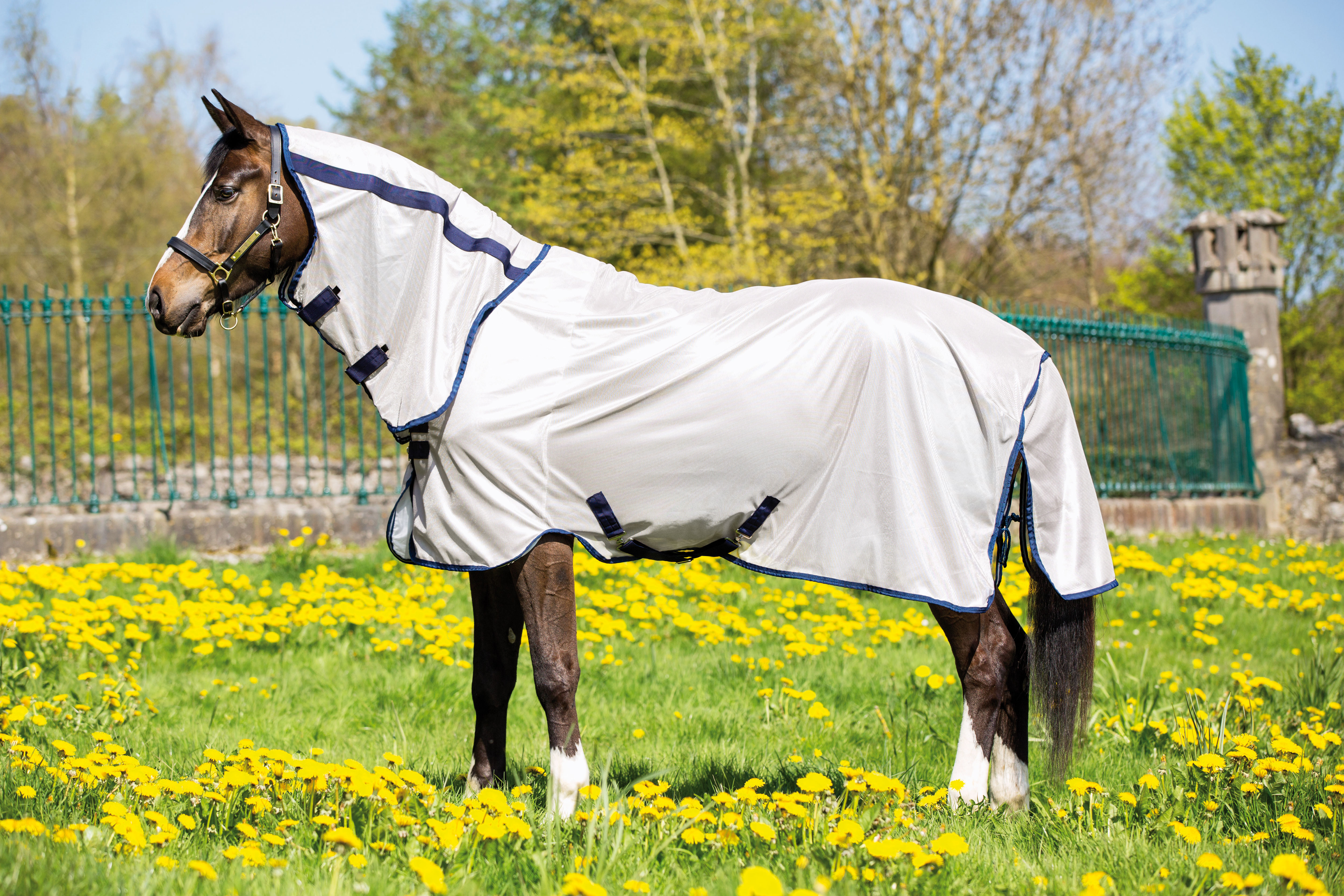 Paard > Horseware > MIO dekens